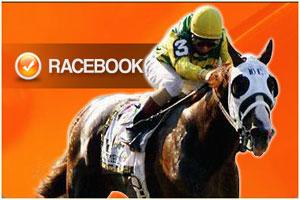 pay-per-head-racebook