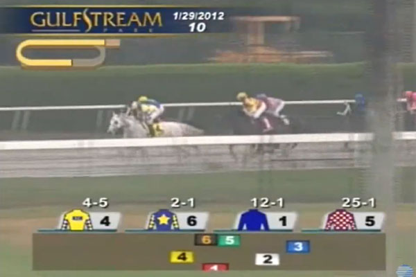 horse-racing-2012